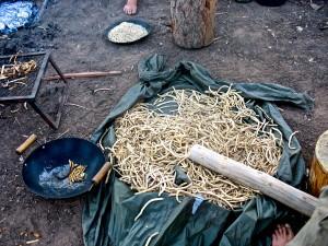 """Arizona Herbal medicine"" ""Sedona herbal medicine"" ""Phoenix herbal medicine"" ""Colorado herbal medicine"" ""Las Vegas herbal medicine"" ""Prescott herbal medicine"" ""Flagstaff herbal medicine"" ""Oak Creek Canyon"" ""New Mexico herbal medicine"" ""Flagstaff essential oil"" ""Flagstaff essential oils"" ""Flagstaff aromatherapy"" ""Prescott essential oil"" ""Prescott essential oils"" ""Prescott aromatherapy"" ""Sedona essential oil"" ""Sedona essential oils"" ""Sedona aromatherapy"" ""Phoenix essential oil"" ""Phoenix essential oils"" ""Phoenix aromatherapy"" ""Las Vegas essential oil"" ""Las Vegas essential oils"" ""Las Vegas aromatherapy"""